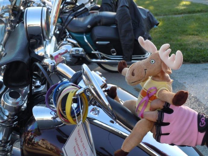 moose bike